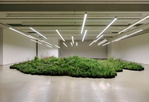 Installation by Linda Tegg at Jil Sander's Milan headquarters.
