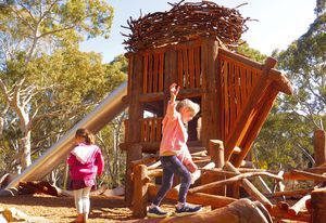 Mukanthi Nature Playspace by Peter Semple Landscape Architects (PSLA) and Climbing Tree Creations in collaboration with Indigenous artist Allan Sumner.