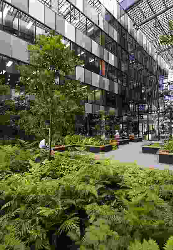 Eco Sciences Precinct landscape by Wilson Architects.