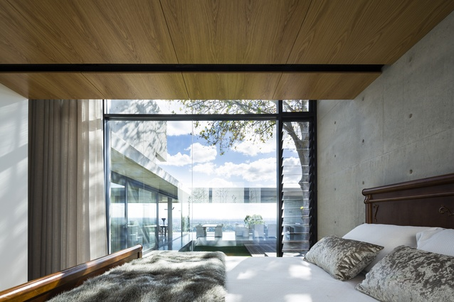 Plane Tree House by Architects Ink.