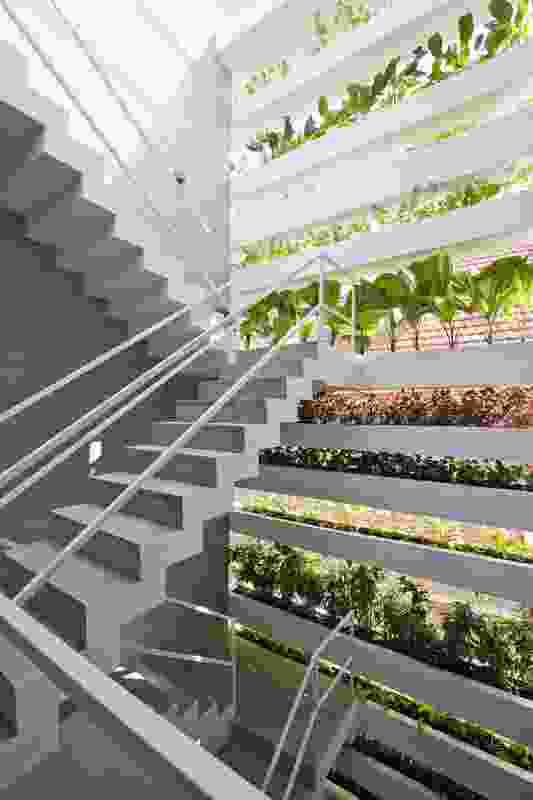 A common urban lot is reinterpreted in Stacking Green, the facade of which features horizontal planters cantilevered from the two side walls.