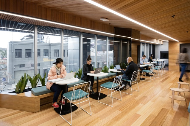 The Spot Student Spaces, Faculty of Business and Economics, University of Melbourne by DesignInc.