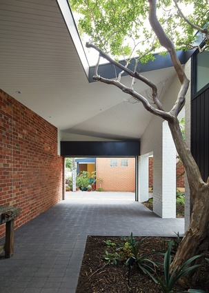 The studio courtyard (or emergency carport), containing space for a crepe myrtle tree, connects to the lively rear laneway.