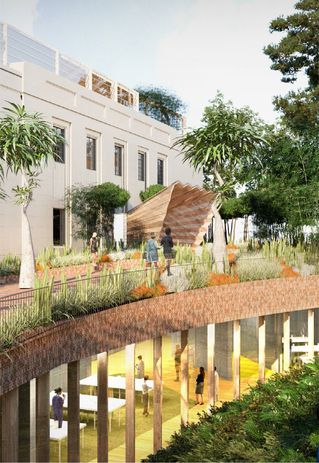 A new underground herbarium and vault in the Nature and Science Precinct of the Royal Botanic Gardens masterplan.